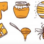 マヌカハニーの効果・効能・選び方!免疫力を高める食べ方は?